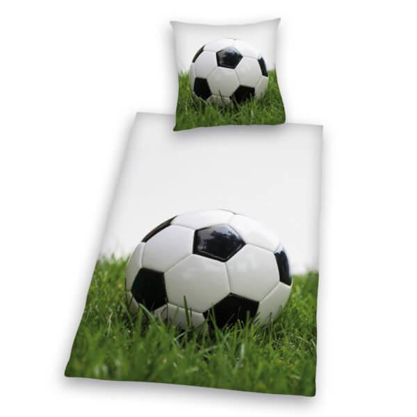 44590-89-050. Soccer Photo
